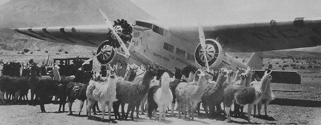 Panagra Ford Trimotor and llamas